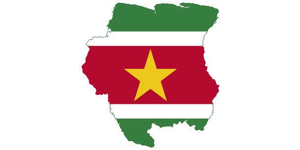 taart met tekst laten bezorgen Bloemen, taart, wijn en meer laten bezorgen in Suriname   Bijlmer  taart met tekst laten bezorgen