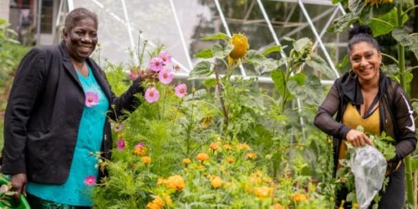 Bloei & Groei maakt kans op Appeltje van Oranje